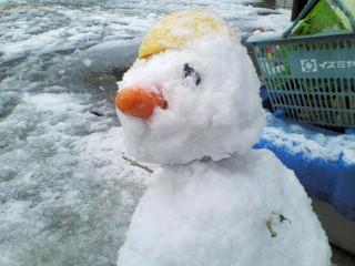 二号待望の雪
