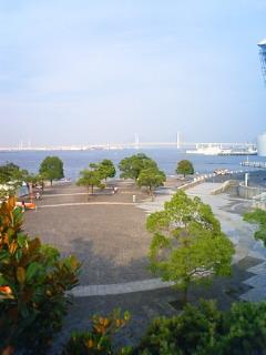 ただいま横浜